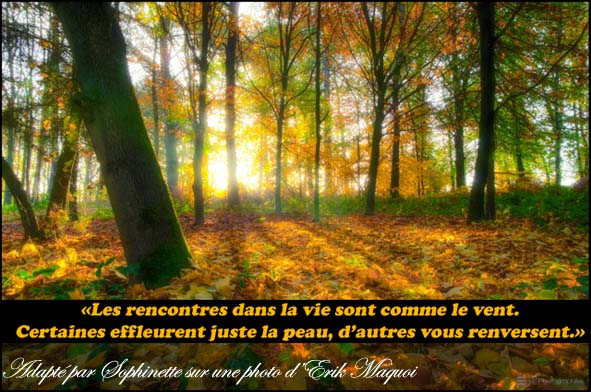 Les rencontres inattendues citation